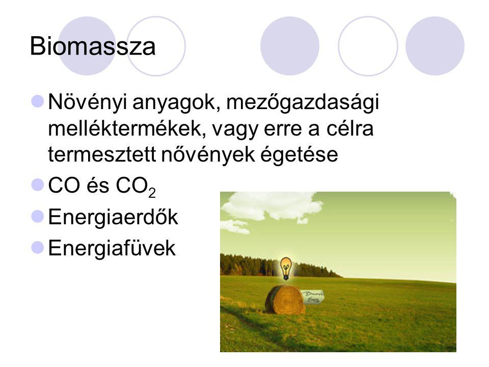 Biomassza Növényi anyagok, mezőgazdasági melléktermékek, vagy erre a célra termesztett nővények égetése.
