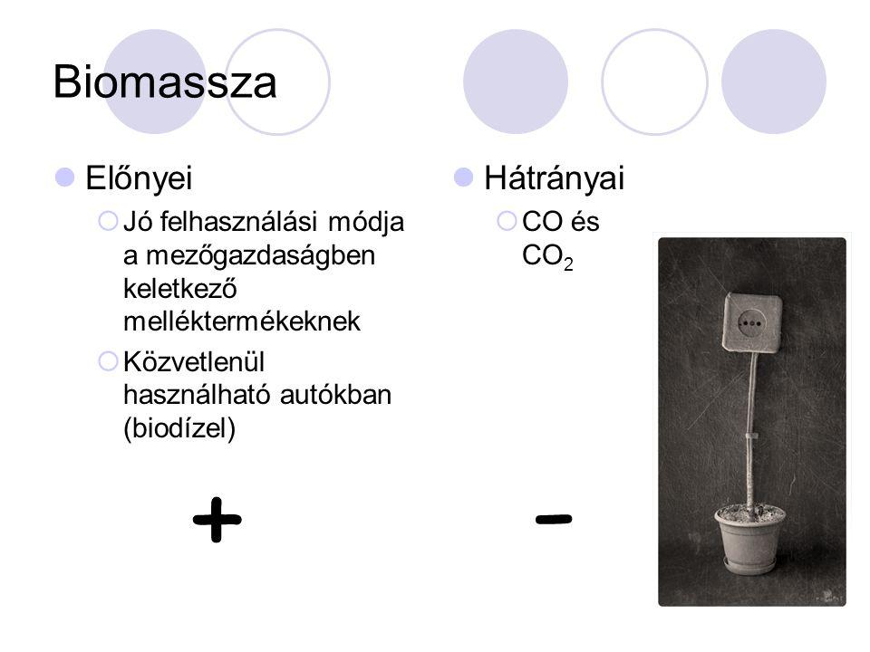 - + Biomassza Előnyei Hátrányai