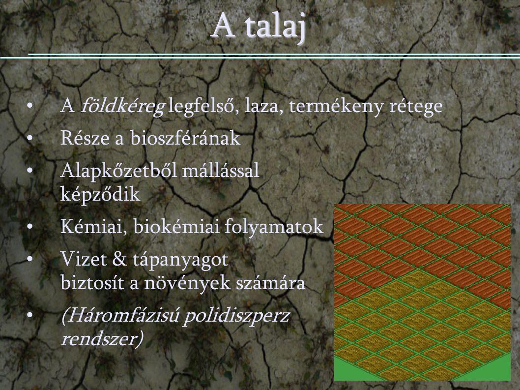 A talaj A földkéreg legfelső, laza, termékeny rétege