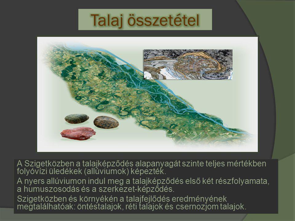 Talaj összetétel A Szigetközben a talajképződés alapanyagát szinte teljes mértékben folyóvízi üledékek (allúviumok) képezték.