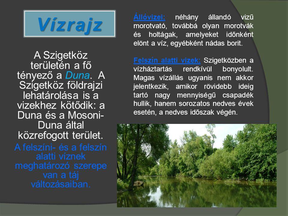 Vízrajz Állóvizei: néhány állandó vizű morotvató, továbbá olyan morotvák és holtágak, amelyeket időnként elönt a víz, egyébként nádas borit.
