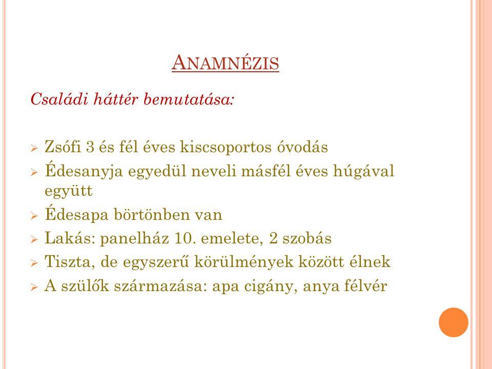 Anamnézis Családi háttér bemutatása: