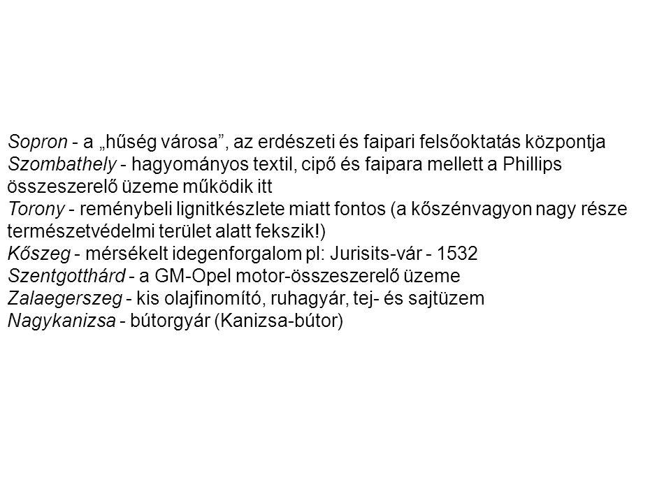 """Sopron - a """"hűség városa , az erdészeti és faipari felsőoktatás központja"""