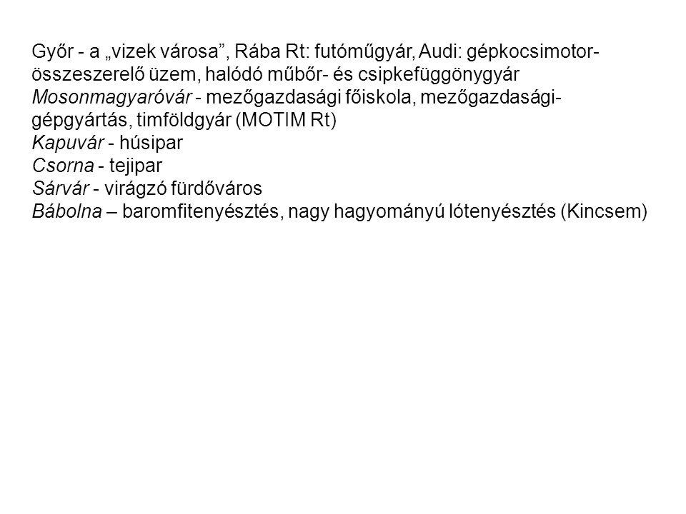 """Győr - a """"vizek városa , Rába Rt: futóműgyár, Audi: gépkocsimotor-összeszerelő üzem, halódó műbőr- és csipkefüggönygyár"""