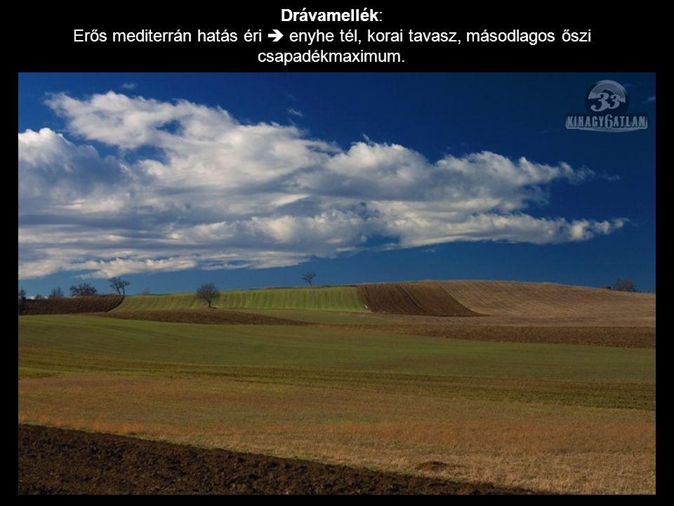 Drávamellék: Erős mediterrán hatás éri  enyhe tél, korai tavasz, másodlagos őszi csapadékmaximum.