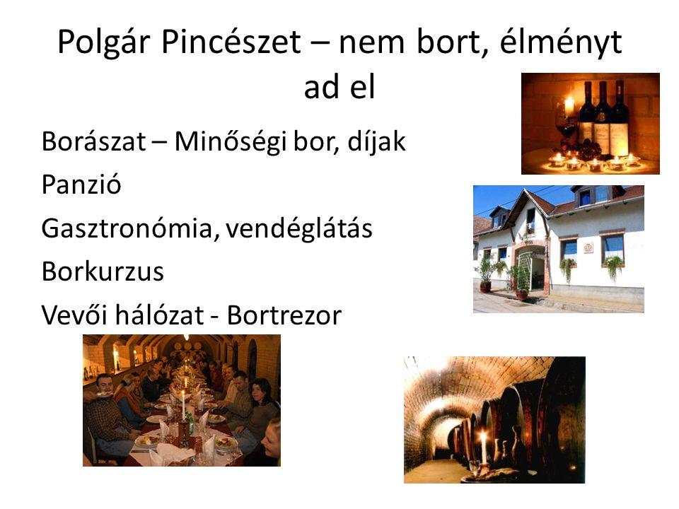 Polgár Pincészet – nem bort, élményt ad el