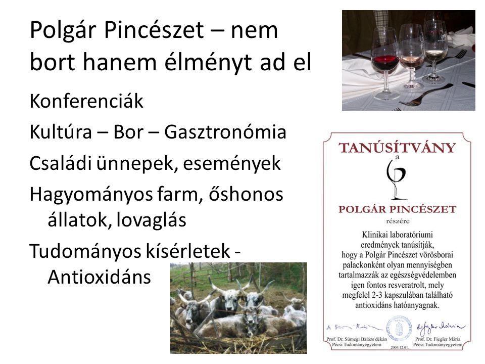 Polgár Pincészet – nem bort hanem élményt ad el