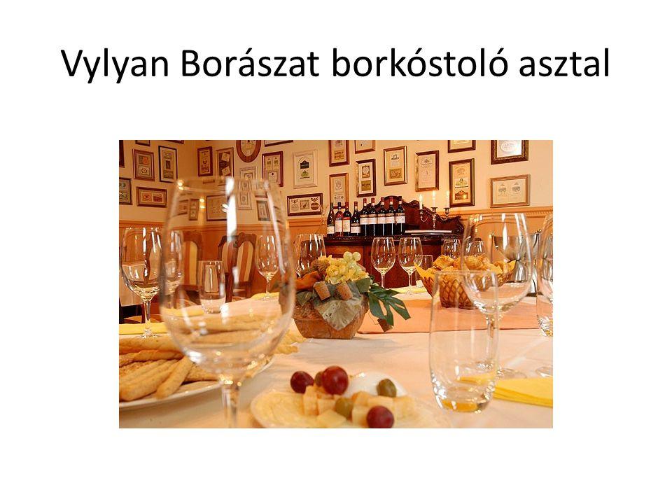 Vylyan Borászat borkóstoló asztal