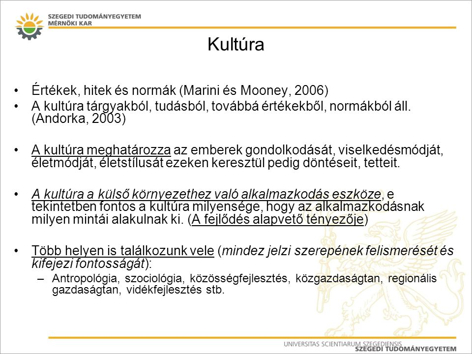 Kultúra Értékek, hitek és normák (Marini és Mooney, 2006)