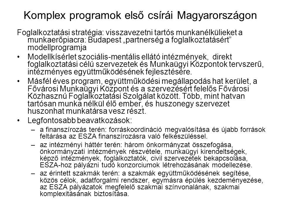 Komplex programok első csírái Magyarországon