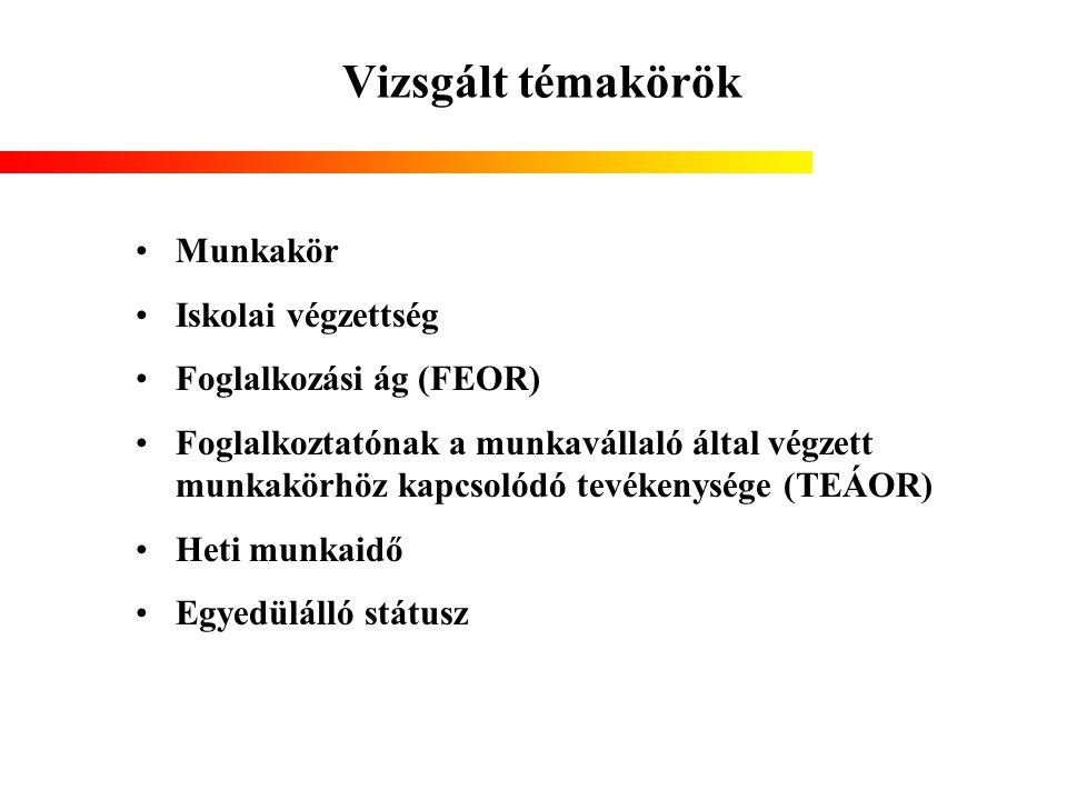 Vizsgált témakörök Munkakör Iskolai végzettség Foglalkozási ág (FEOR)