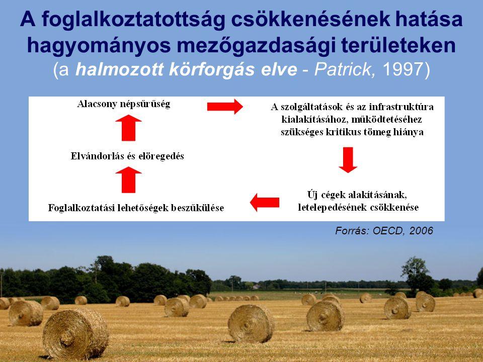 A foglalkoztatottság csökkenésének hatása hagyományos mezőgazdasági területeken (a halmozott körforgás elve - Patrick, 1997)