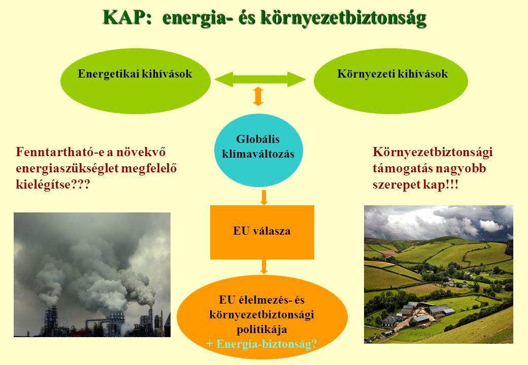 KAP: energia- és környezetbiztonság