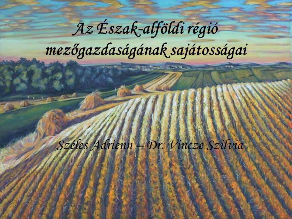 Az Észak-alföldi régió mezőgazdaságának sajátosságai