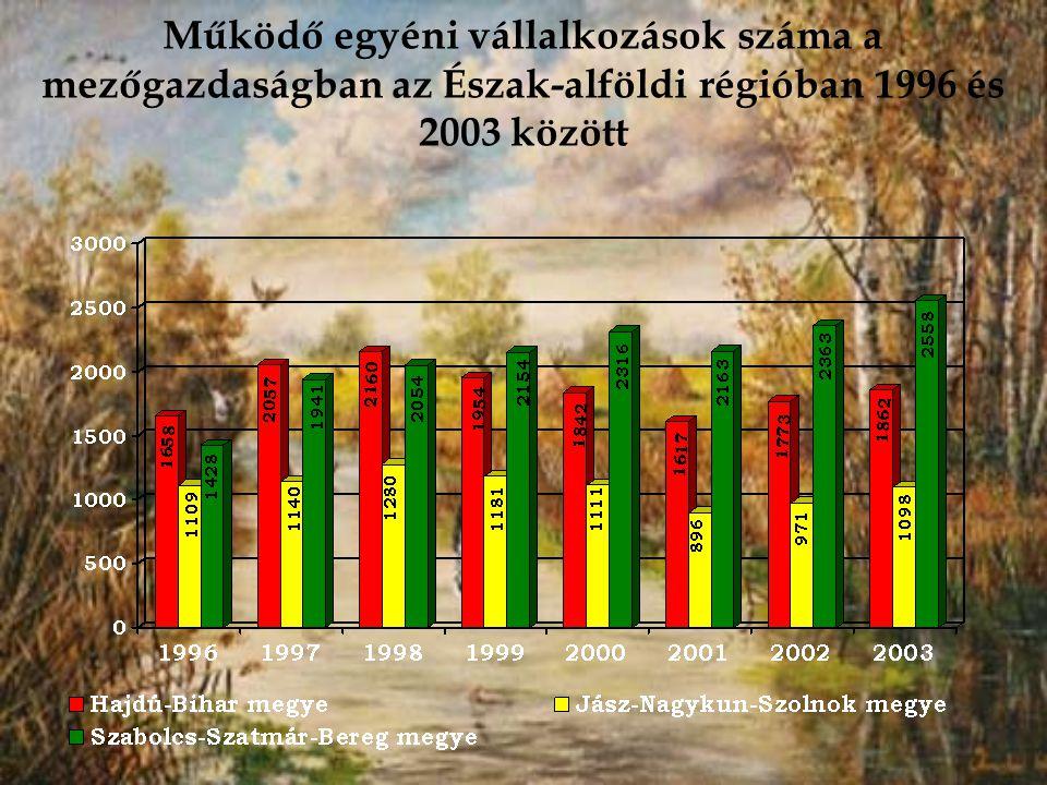 Működő egyéni vállalkozások száma a mezőgazdaságban az Észak-alföldi régióban 1996 és 2003 között