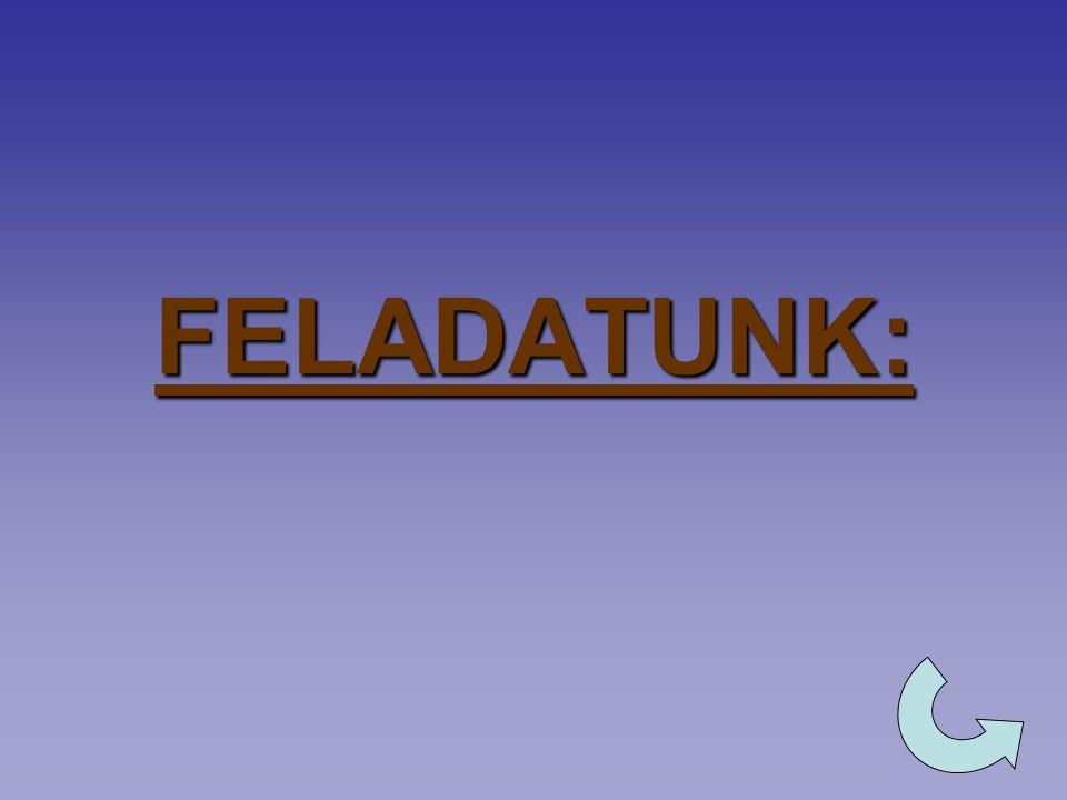 FELADATUNK: