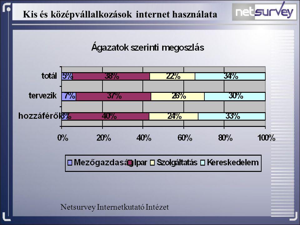 Kis és középvállalkozások internet használata