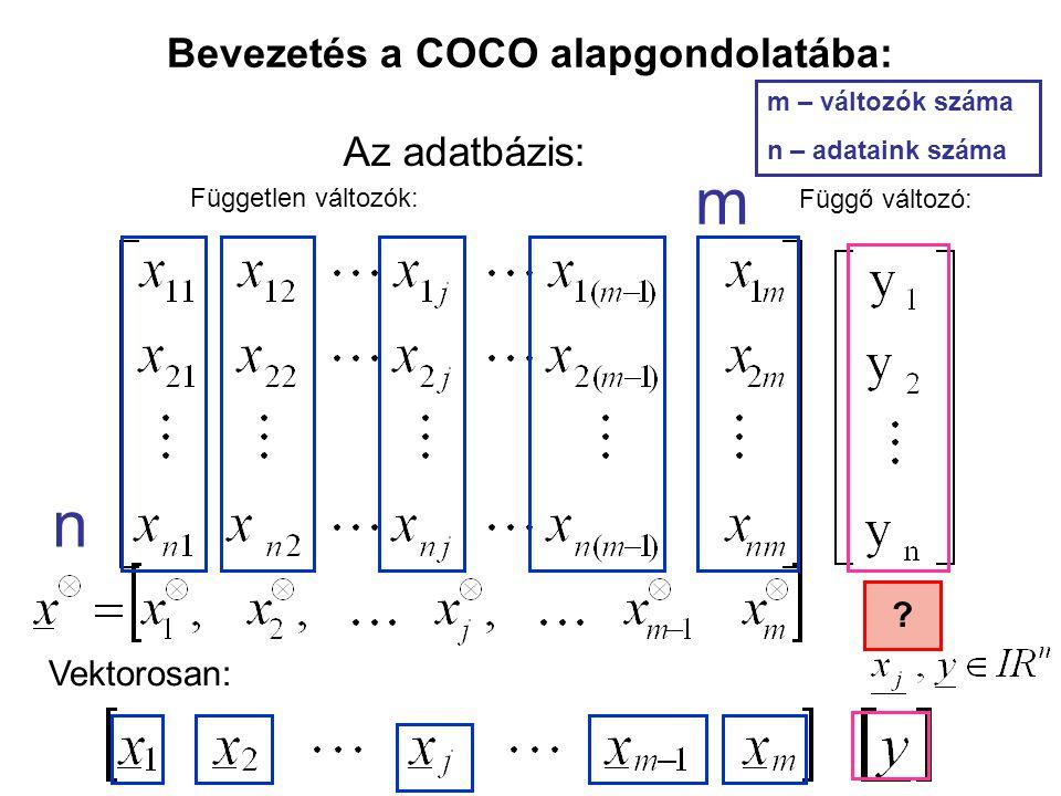 Bevezetés a COCO alapgondolatába: