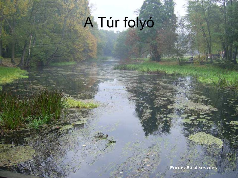 A Túr folyó Forrás:Saját készítés