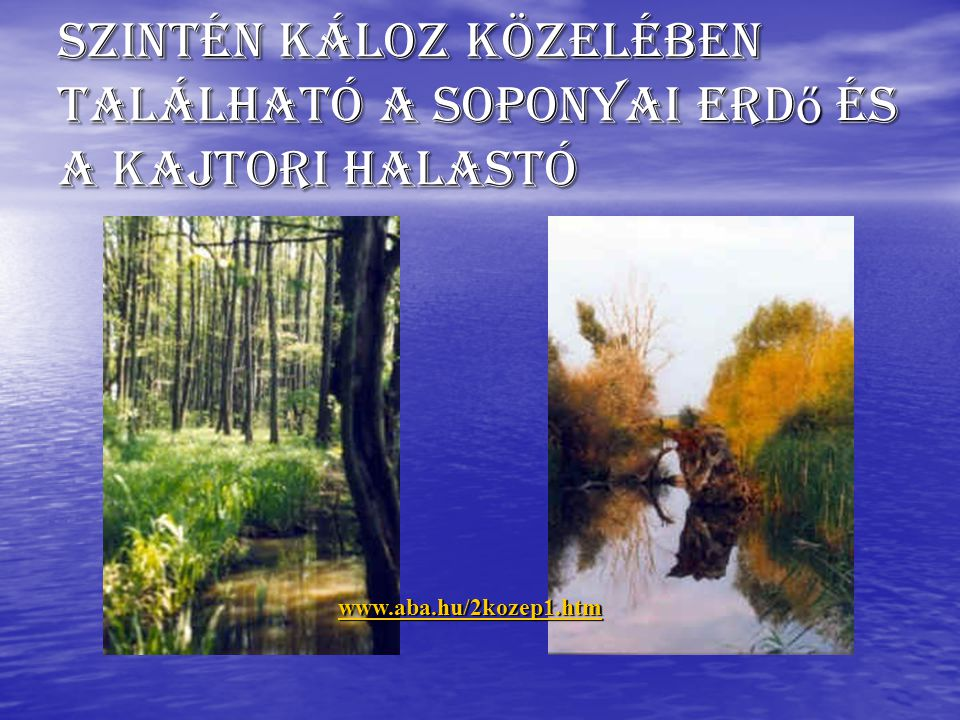 Szintén Káloz közelében található a soponyai erdő és a kajtori halastó