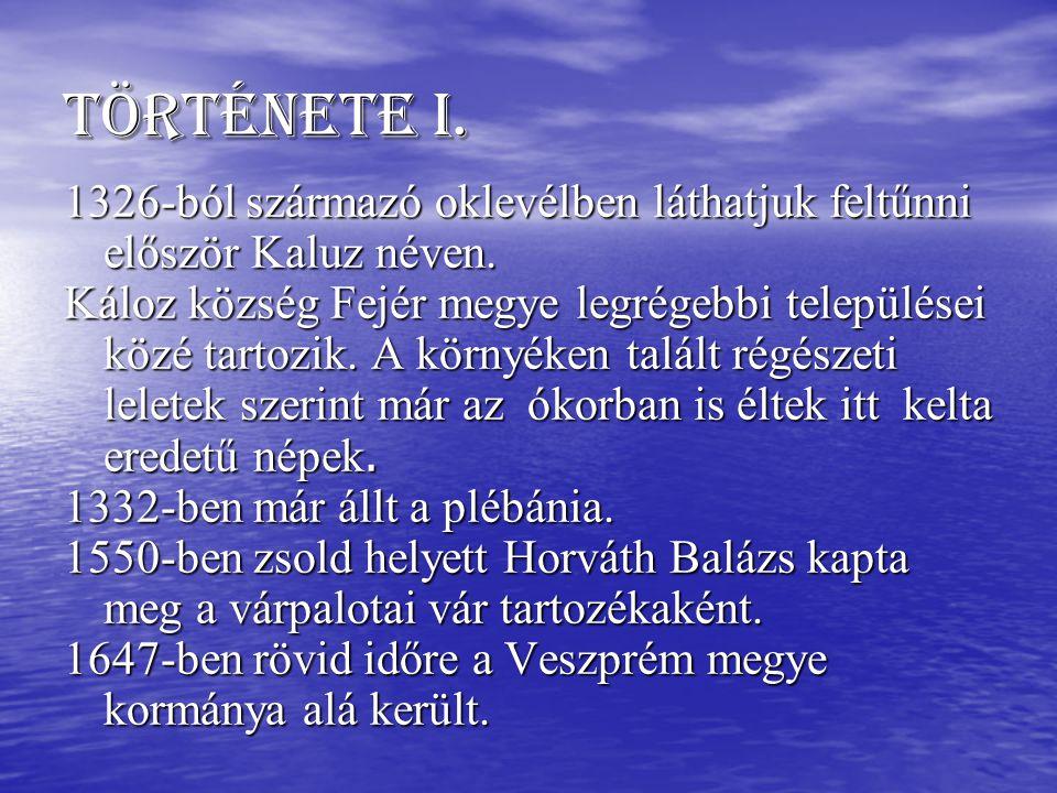 Története I. 1326-ból származó oklevélben láthatjuk feltűnni először Kaluz néven.