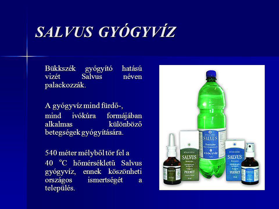 SALVUS GYÓGYVÍZ Bükkszék gyógyító hatású vizét Salvus néven palackozzák. A gyógyvíz mind fürdő-,