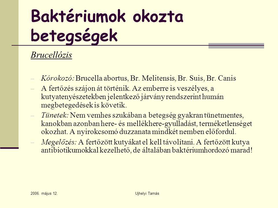 Baktériumok okozta betegségek
