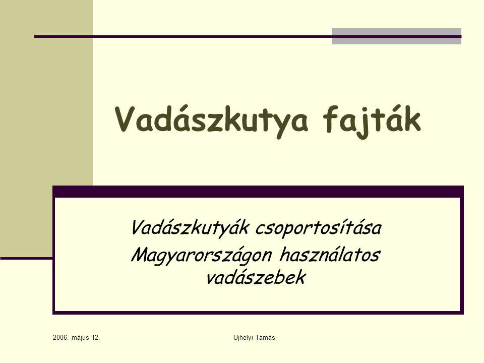 Vadászkutyák csoportosítása Magyarországon használatos vadászebek