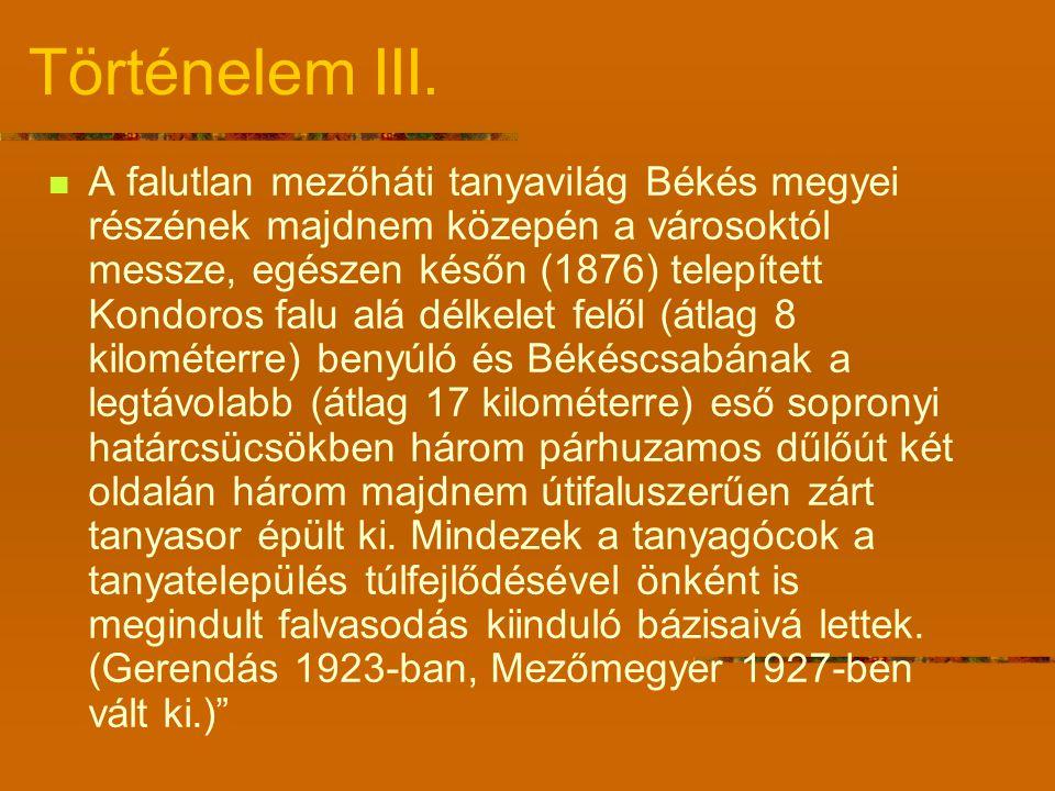 Történelem III.