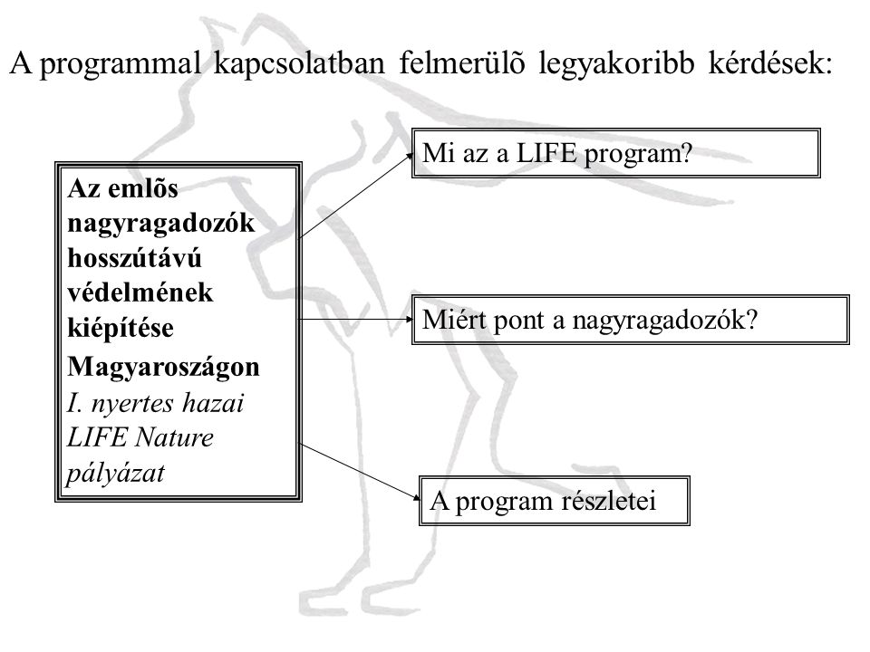 A programmal kapcsolatban felmerülõ legyakoribb kérdések: