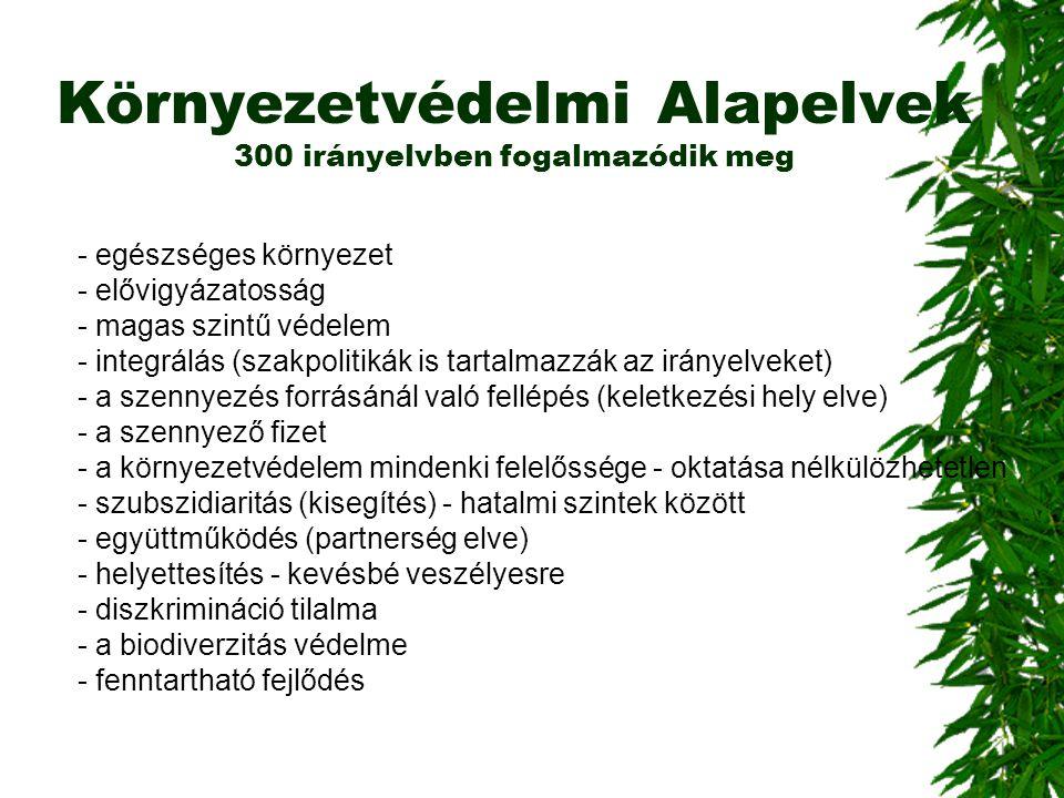 Környezetvédelmi Alapelvek 300 irányelvben fogalmazódik meg