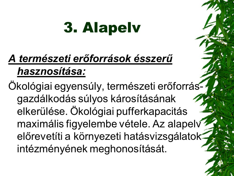 3. Alapelv A természeti erőforrások ésszerű hasznosítása: