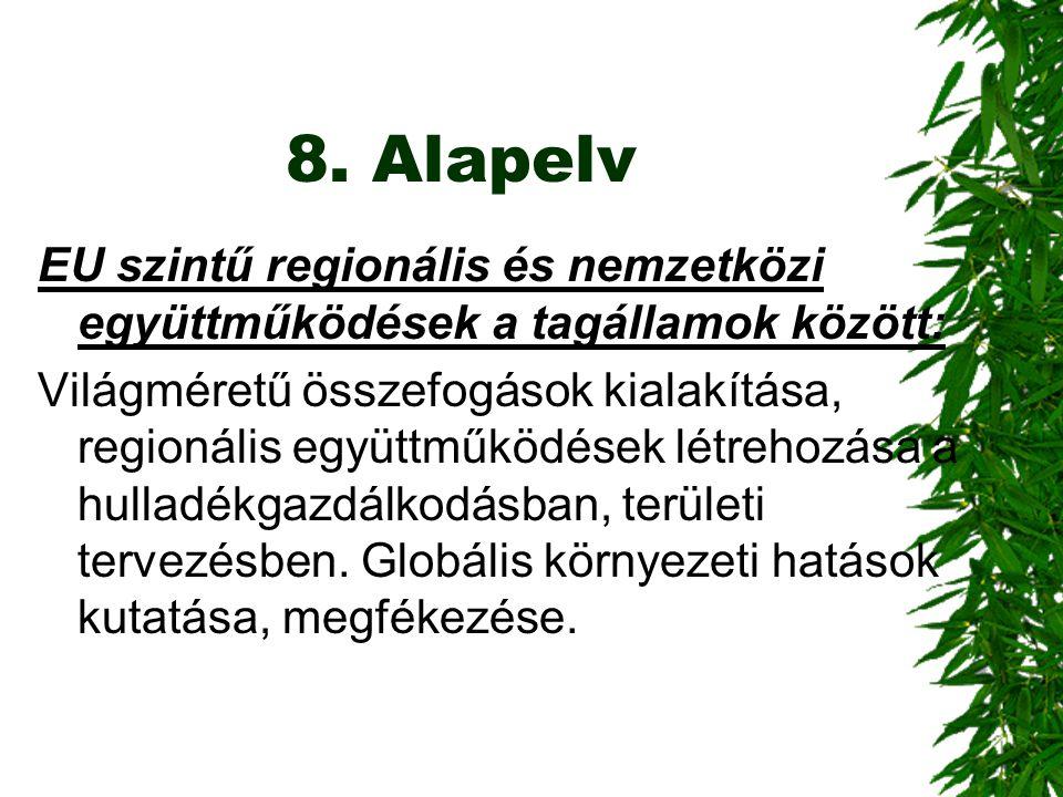 8. Alapelv EU szintű regionális és nemzetközi együttműködések a tagállamok között: