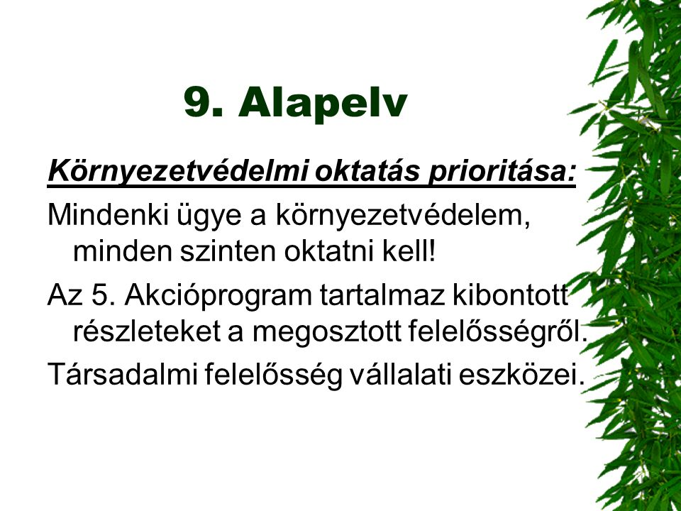 9. Alapelv Környezetvédelmi oktatás prioritása: