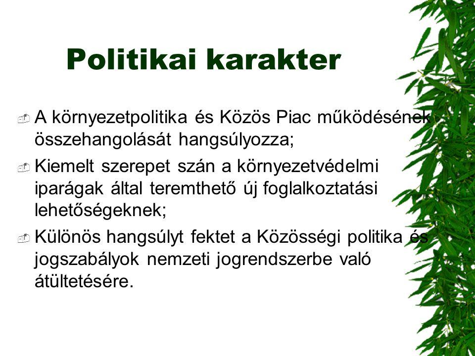 Politikai karakter A környezetpolitika és Közös Piac működésének összehangolását hangsúlyozza;