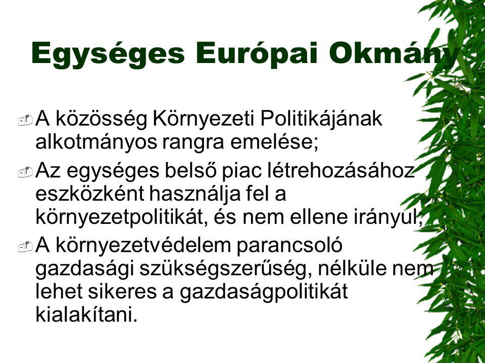Egységes Európai Okmány