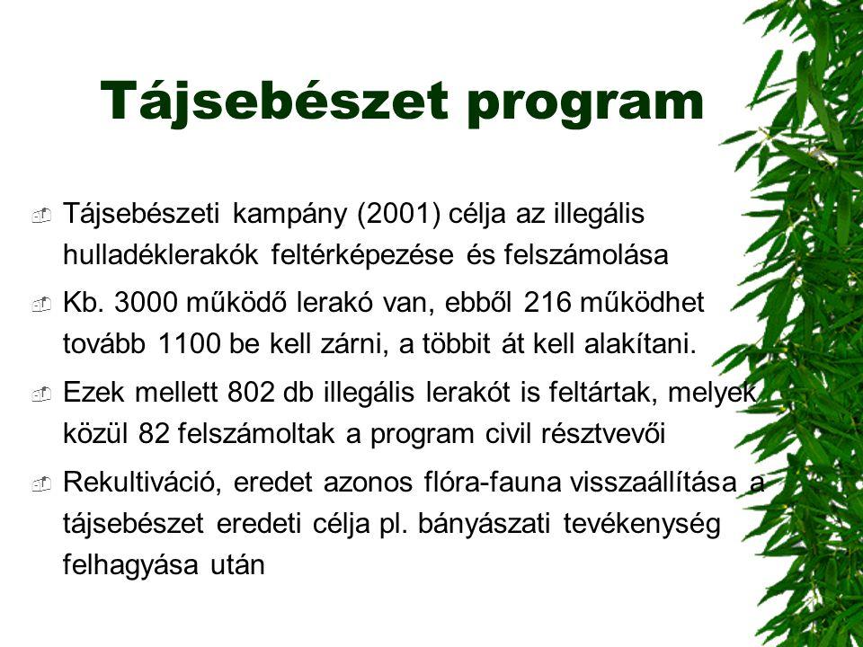 Tájsebészet program Tájsebészeti kampány (2001) célja az illegális hulladéklerakók feltérképezése és felszámolása.
