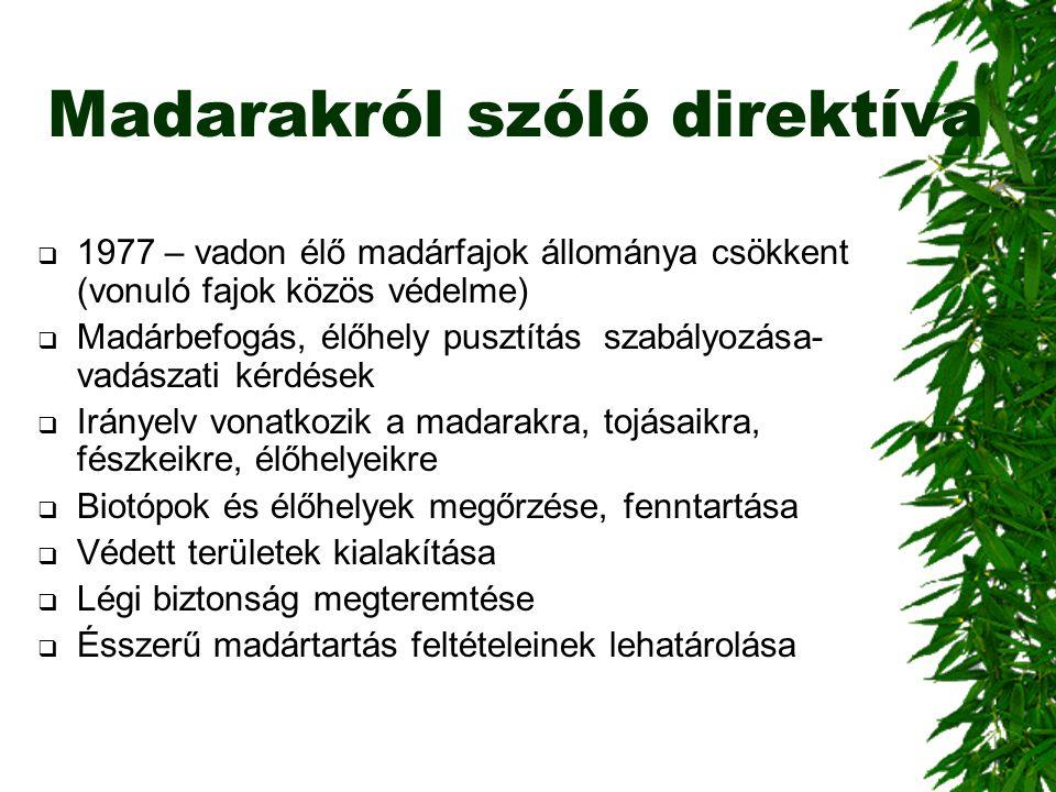 Madarakról szóló direktíva