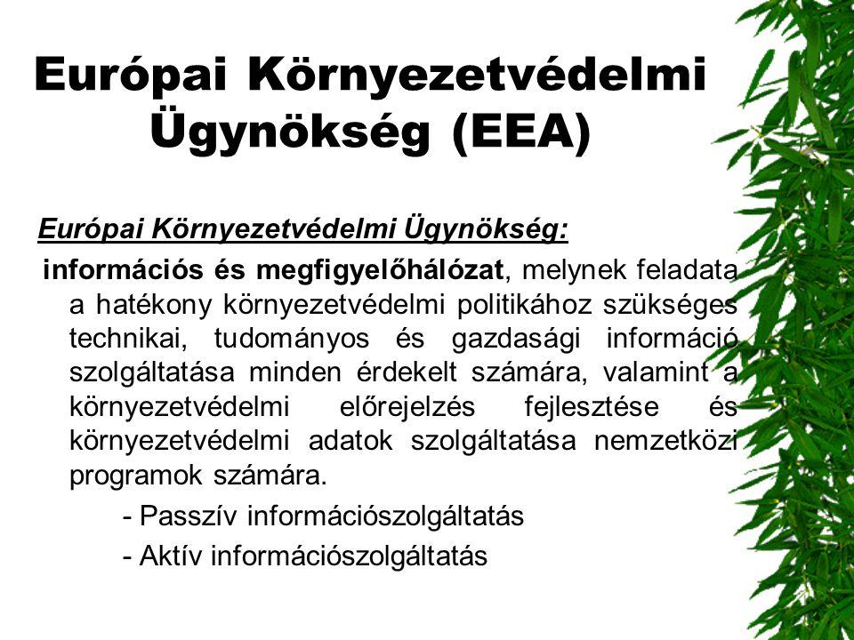 Európai Környezetvédelmi Ügynökség (EEA)