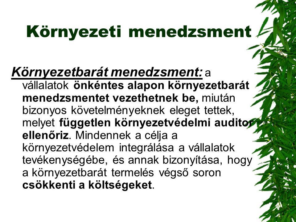 Környezeti menedzsment