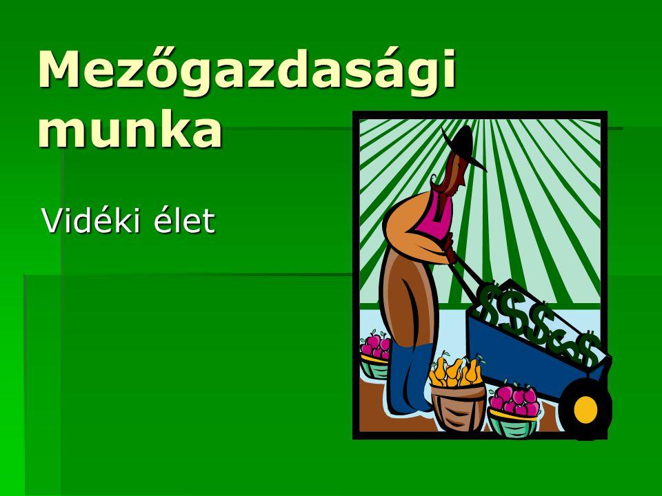 Mezőgazdasági munka Vidéki élet