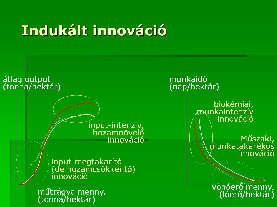 Indukált innováció átlag output (tonna/hektár) munkaidő (nap/hektár)
