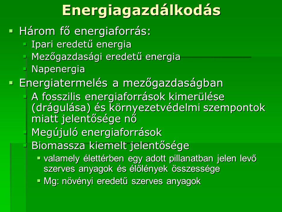 Energiagazdálkodás Három fő energiaforrás: