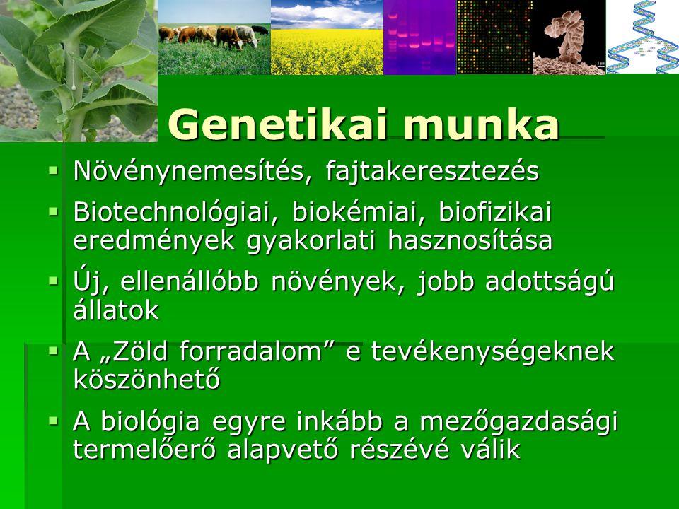 Genetikai munka Növénynemesítés, fajtakeresztezés