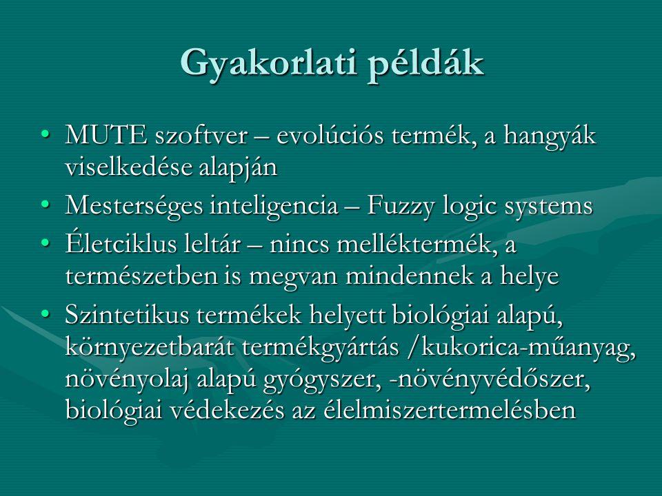 Gyakorlati példák MUTE szoftver – evolúciós termék, a hangyák viselkedése alapján. Mesterséges inteligencia – Fuzzy logic systems.