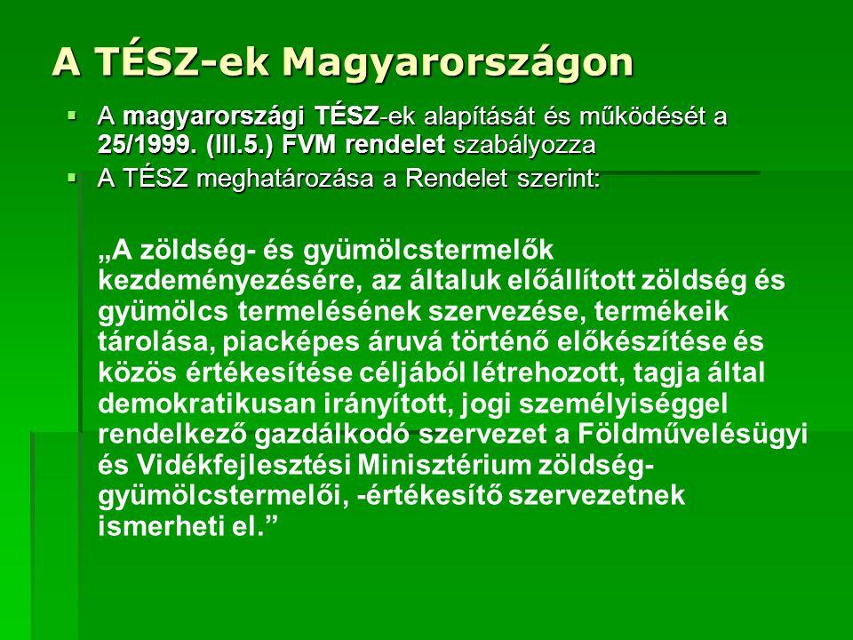 A TÉSZ-ek Magyarországon