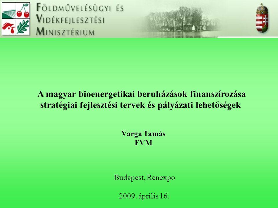 A magyar bioenergetikai beruházások finanszírozása