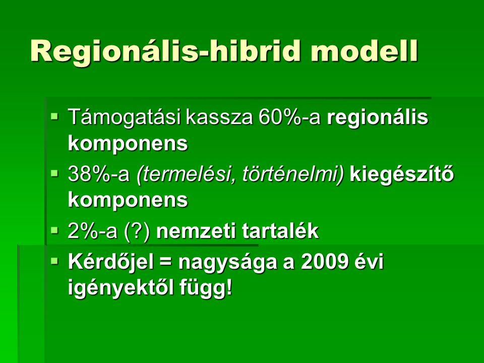 Regionális-hibrid modell