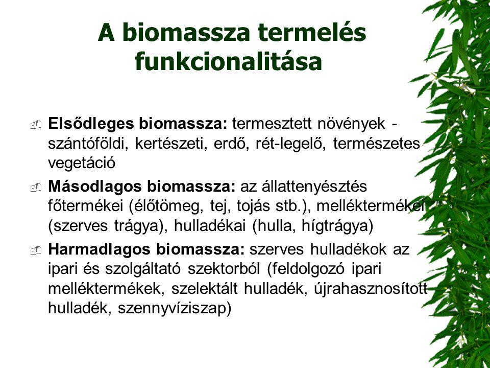 A biomassza termelés funkcionalitása