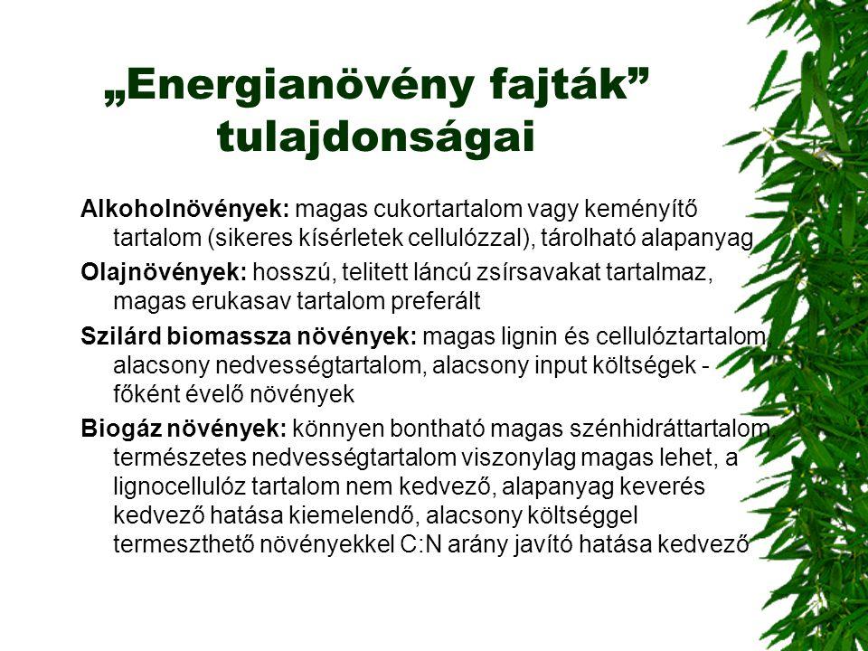"""""""Energianövény fajták tulajdonságai"""